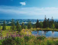 landschaft-bayerischer-wald-04